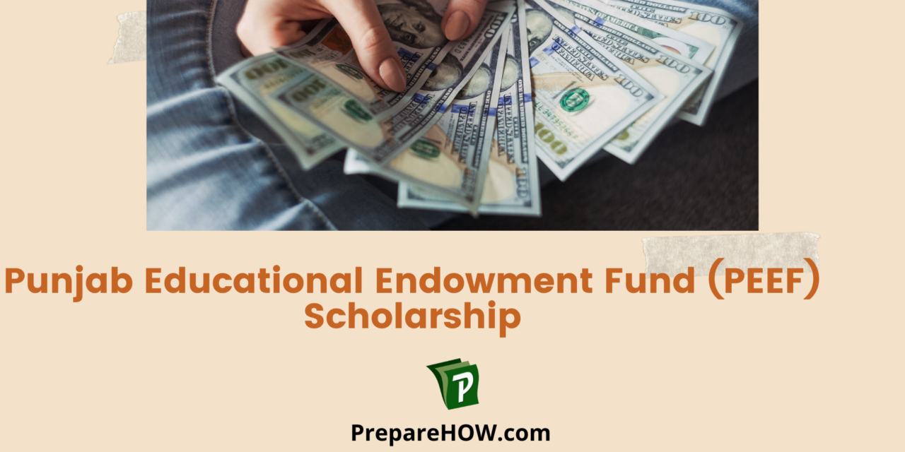 Punjab Educational Endowment Fund PEEF Scholarship Guidance: